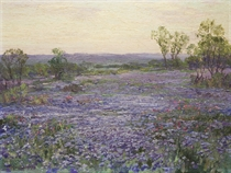 A Verbena Field at Twilight