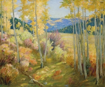 Taos Forest