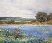 Blue Acres