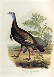 BONAPARTE, Charles Lucien (180