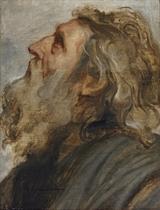 Study of a bearded man, in profile - a modello