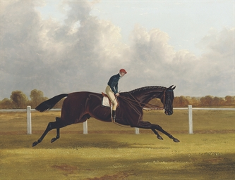 Major Yarburgh's brown colt, C