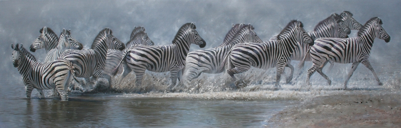 Flight of the zebra