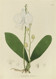 HORSFIELD, Thomas (1773-1859),