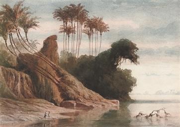 Brazilian River Landscape