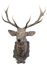 AN AUSTRIAN CARVED WOOD DEER H