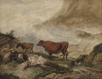Cattle and sheep in the Highla