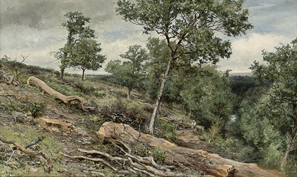 A figure resting in a wooded r