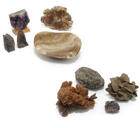 A group of nine mineral specim