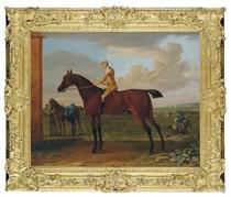 Wanton, a bay racehorse with jockey up, at Newmarket