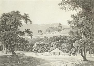 Coaduwar Gaut, from Oriental S