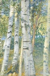 Björkstammer (Birch trees)