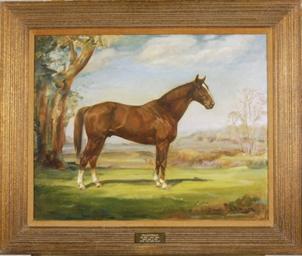 Portrait of the horse 'Palesti
