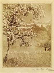 Frühling am Walensee, um 1928
