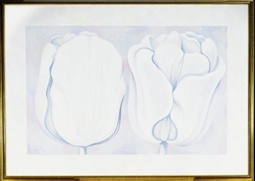 Two White on White Tulips