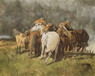 Horses before a storm