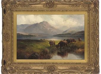 Highland cattle, Loch Venachar, Perthshire