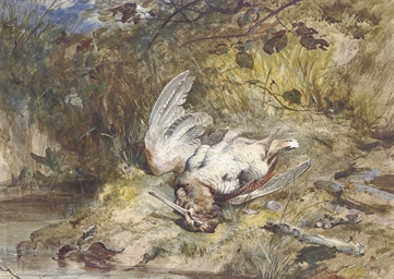 A woodcock by a stream