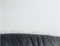 "Study after ""Untitled Landscapes,"" 1987"