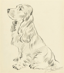 Five studies of dogs including