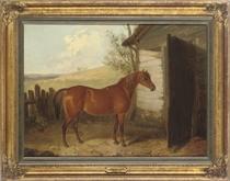 A chestnut hunter beside a barn