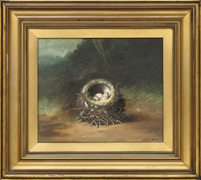 A bird's nest on a mossy bank