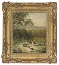 Three partridge in an extensive landscape