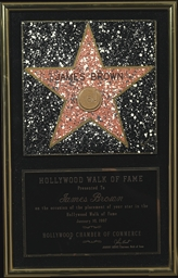 Hollywood Walk of Fame Award