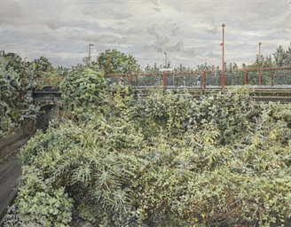 Railway Embankment-Summer