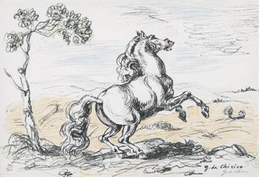 Cavallo in Libertà (Ciranna 13