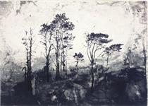 Parlous Land, from Parlous Land