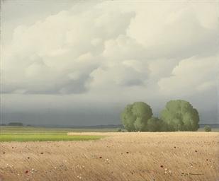 Le champ de blés, Nièvre, Fran