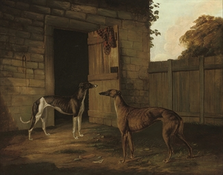 Two greyhounds outside a stabl
