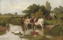 Calves watering with ducks in a peaceful river landscape