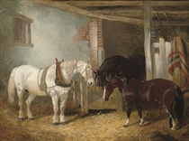 Three horses in a stable feeding from a manger