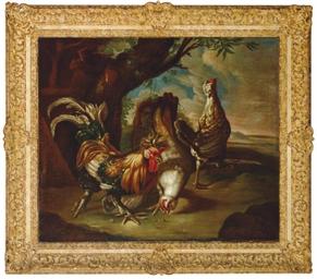 Poultry in a landscape