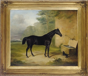 A black horse and dog by the w