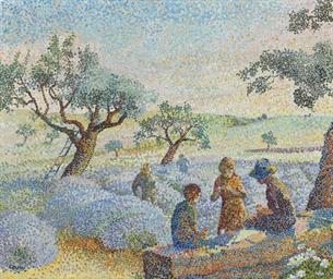 Cueillette des lavandes