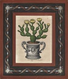 Pair of Cacti