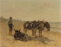 Strandezeltjes te Scheveningen: donkeys on the beach