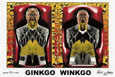 Ginkgo Winkgo