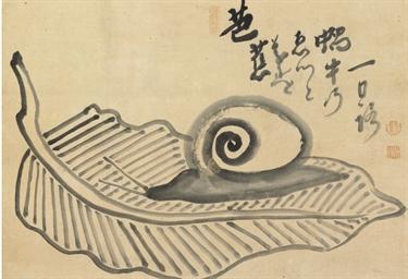 Snail on plantain leaf