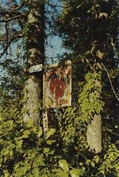 Near Sanatobia, Mississippi, 1