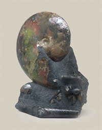 An ammonite assemblage