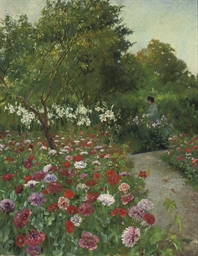 A garden in bloom