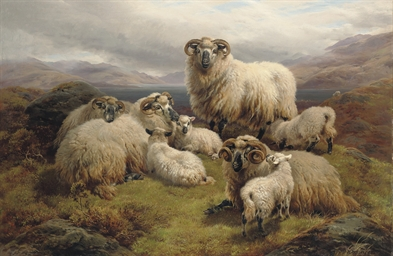 Sheep grazing by a loch