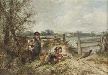 Chasing a pheasant