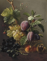 Grapes, prunes, peaches and a chessnut on a ledge