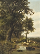 Sheep near a forest stream