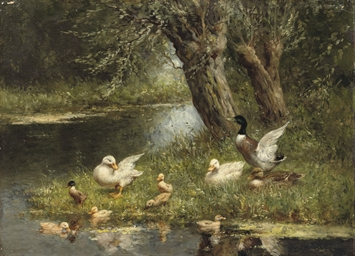 A duck family near the pond